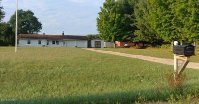 Osceola County Single Family Home For Sale: 21275 W 6 Mile Road
