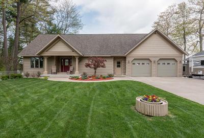 Newaygo Single Family Home For Sale: 5186 S Gordon Avenue