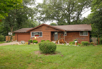 Mattawan Single Family Home For Sale: 48430 27th Street