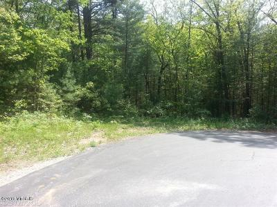 Allegan County Residential Lots & Land For Sale: Wildwood Drive #36