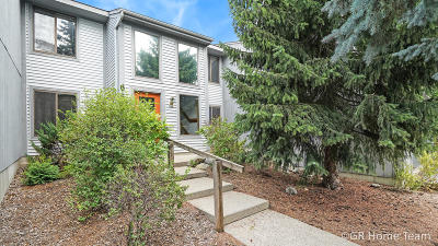 Rockford MI Condo/Townhouse For Sale: $134,900