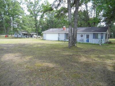 Lake County Single Family Home For Sale: 955 E 11 Mile Road