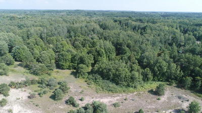Benzie County, Charlevoix County, Clare County, Emmet County, Grand Traverse County, Kalkaska County, Lake County, Leelanau County, Manistee County, Mason County, Missaukee County, Osceola County, Roscommon County, Wexford County Residential Lots & Land For Sale: 9280 James Street