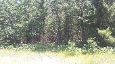 Muskegon County Residential Lots & Land For Sale: Lot 138 Danc #138