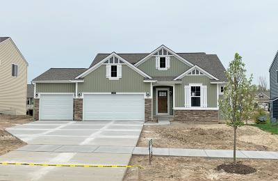 Single Family Home For Sale: 3215 Lowingside Drive #Lot 189