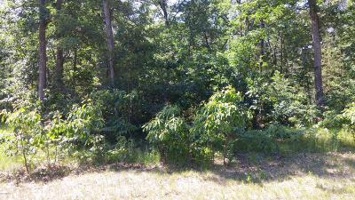 Muskegon County Residential Lots & Land For Sale: Lot 146 Danc
