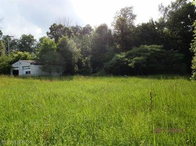 Berrien County, Branch County, Calhoun County, Cass County, Hillsdale County, Jackson County, Kalamazoo County, St. Joseph County, Van Buren County Residential Lots & Land For Sale: 33260 Wattles Road
