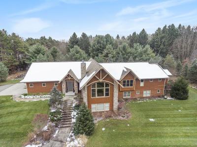 Kalamazoo Single Family Home For Sale: 5655 Q Avenue