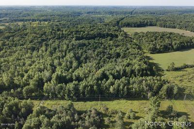 Newaygo County Residential Lots & Land For Sale: V/L 013 S Vandenbosch