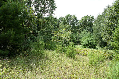 Morley Residential Lots & Land For Sale: 23189 4 Mile Road