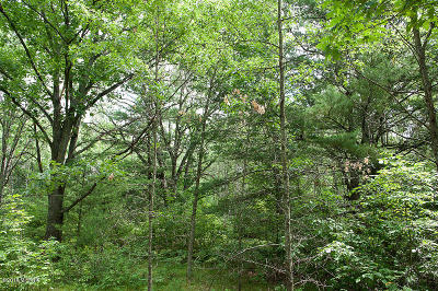 Morley Residential Lots & Land For Sale: 23145 4 Mile Road