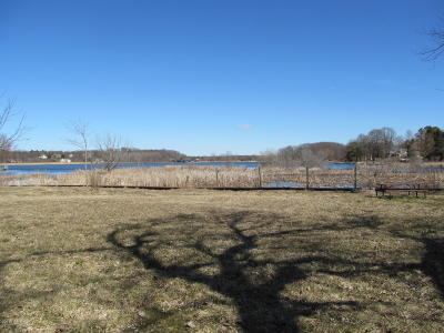 Saugatuck, Douglas Residential Lots & Land For Sale: 127 Water Street