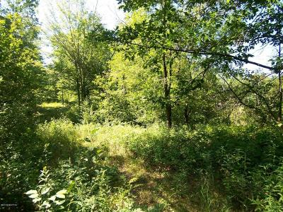 Benzie County, Charlevoix County, Clare County, Emmet County, Grand Traverse County, Kalkaska County, Lake County, Leelanau County, Manistee County, Mason County, Missaukee County, Osceola County, Roscommon County, Wexford County Residential Lots & Land For Sale: Parcel B 10 Mile Road