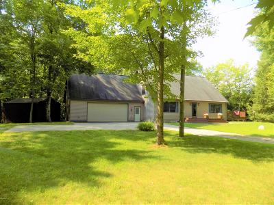 Manistee County Single Family Home For Sale: 2406 Bialik Road