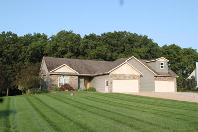 Middleville Single Family Home For Sale: 10413 Cottonwood Court