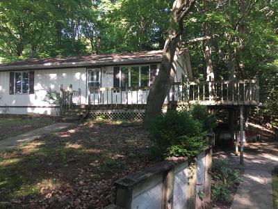 Evart Single Family Home For Sale: 9942 Lake Miramichi Drive