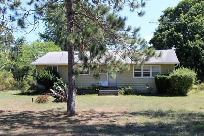Newaygo Single Family Home For Sale: 5948 Oak Avenue