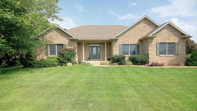 Berrien County Single Family Home For Sale: 119 Hummingbird Lane