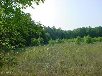 Holland, West Olive Residential Lots & Land For Sale: 120th Avenue