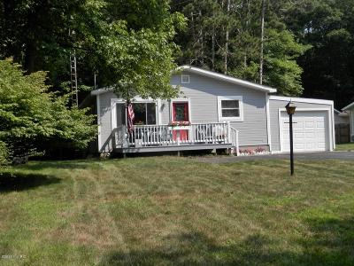 Manistee County Single Family Home For Sale: 290 E Piney Road