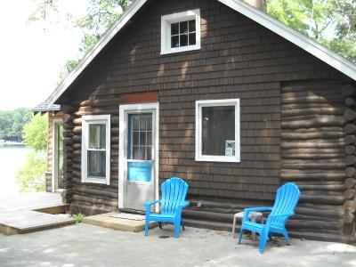 Newaygo County Single Family Home For Sale: 10487 N Bingham Avenue