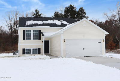 Montcalm County Single Family Home For Sale: 11077 Meadow Wood Circle