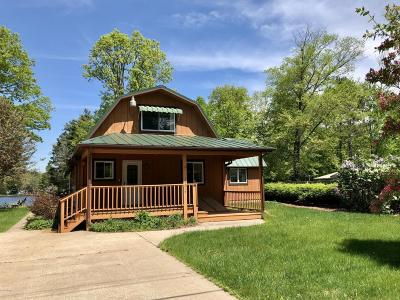 Mecosta County Single Family Home For Sale: 11219 Birch Park Drive