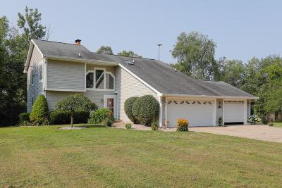 Calhoun County Single Family Home For Sale: 12475 Beadle Lake Road