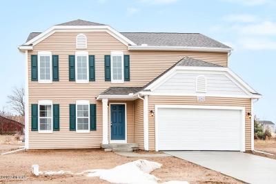 Van Buren County Single Family Home For Sale: 32902 Bordeaux Avenue