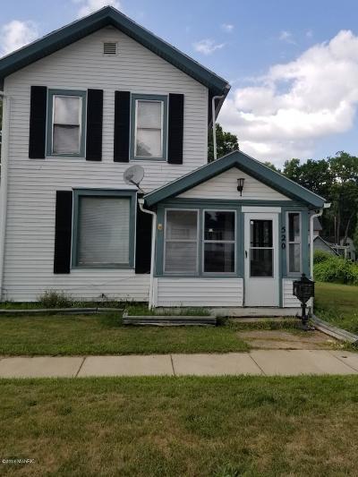 Albion Single Family Home For Sale: 520 Washington Street