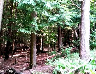 Benzie County, Charlevoix County, Clare County, Emmet County, Grand Traverse County, Kalkaska County, Lake County, Leelanau County, Manistee County, Mason County, Missaukee County, Osceola County, Roscommon County, Wexford County Residential Lots & Land For Sale: 2311 Hill Rd. Parcel B