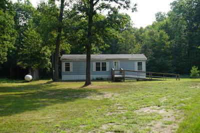Newaygo County Single Family Home For Sale: 13252 N Woodbridge Avenue