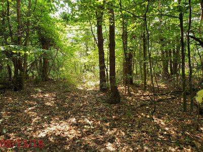 Allegan County, Barry County, Clinton County, Eaton County, Gratiot County, Ingham County, Ionia County, Isabella County, Kent County, Mecosta County, Montcalm County, Muskegon County, Newaygo County, Oceana County, Ottawa County Residential Lots & Land For Sale: Par A 104th