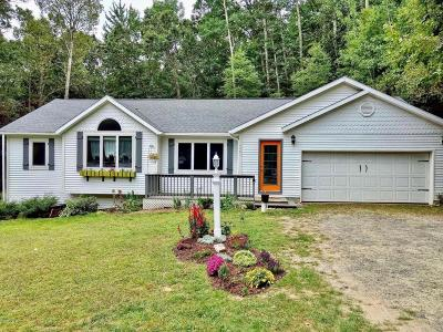 Pentwater Single Family Home For Sale: 4461 W Hammett Road