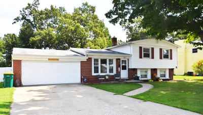 Battle Creek Single Family Home For Sale: 516 Morningside Drive