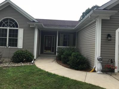 Kalamazoo County Single Family Home For Sale: 9689 W P Avenue
