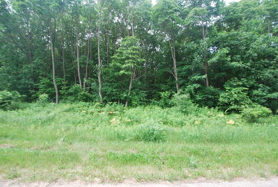 Saugatuck, Douglas Residential Lots & Land For Sale: Gleason Road #F