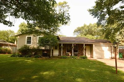 Grand Haven Single Family Home For Sale: 15075 155th Avenue
