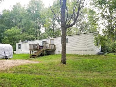 Newaygo County Single Family Home For Sale: 12775 Newcosta Avenue