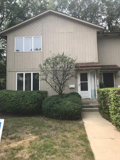 Clinton County, Gratiot County, Isabella County, Kent County, Mecosta County, Montcalm County, Muskegon County, Newaygo County, Oceana County, Ottawa County, Ionia County, Ingham County, Eaton County, Barry County, Allegan County Condo/Townhouse For Sale: 1378 W Norton Avenue
