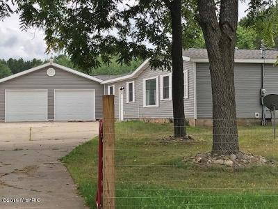 Benzie County, Charlevoix County, Clare County, Emmet County, Grand Traverse County, Kalkaska County, Lake County, Leelanau County, Manistee County, Mason County, Missaukee County, Osceola County, Roscommon County, Wexford County Single Family Home For Sale: 19731 20 Mile Road