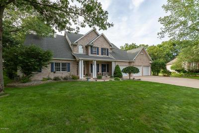 Kalamazoo County Single Family Home For Sale: 6801 Joshua Tree Court