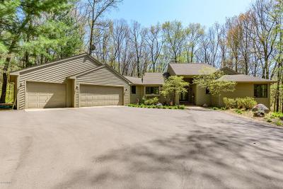 Kalamazoo County Single Family Home For Sale: 4120 E C Avenue