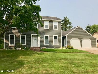 Grand Rapids Single Family Home For Sale: 3843 E Norwalk Drive SE