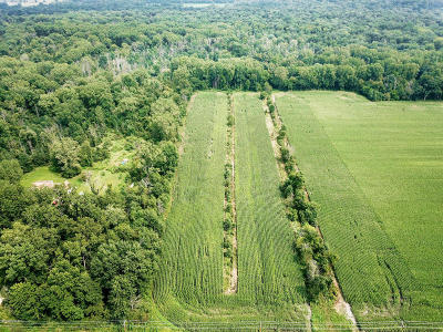 Berrien County, Branch County, Calhoun County, Cass County, Hillsdale County, Jackson County, Kalamazoo County, Van Buren County, St. Joseph County Residential Lots & Land For Sale: 1 N M-51 Highway