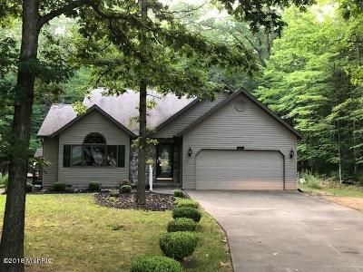 Mecosta County Single Family Home For Sale: 6876 E Clubhouse Drive