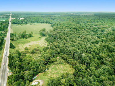 Berrien County, Branch County, Calhoun County, Cass County, Hillsdale County, Jackson County, Kalamazoo County, Van Buren County, St. Joseph County Residential Lots & Land For Sale: 2 N M-51 Highway