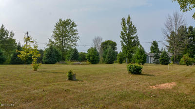 Allegan County, Barry County, Clinton County, Eaton County, Gratiot County, Ingham County, Ionia County, Isabella County, Kent County, Mecosta County, Montcalm County, Muskegon County, Newaygo County, Oceana County, Ottawa County Residential Lots & Land For Sale: Lot 8 S Derby Road