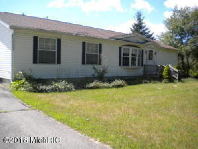 Mecosta County Single Family Home For Sale: 18661 Hoover Road