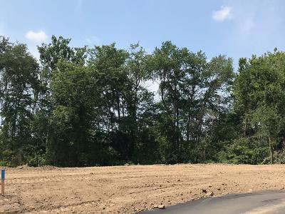 Hudsonville Residential Lots & Land For Sale: 3339 Rivington Drive #25